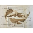 lithograph: Secret Between Autumn Leaves Nr. 57/90